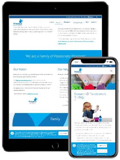Proveca responsive website